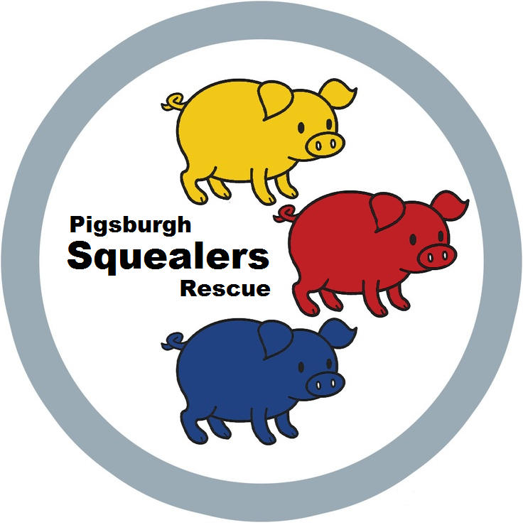 Pigsburgh Squealers Rescue