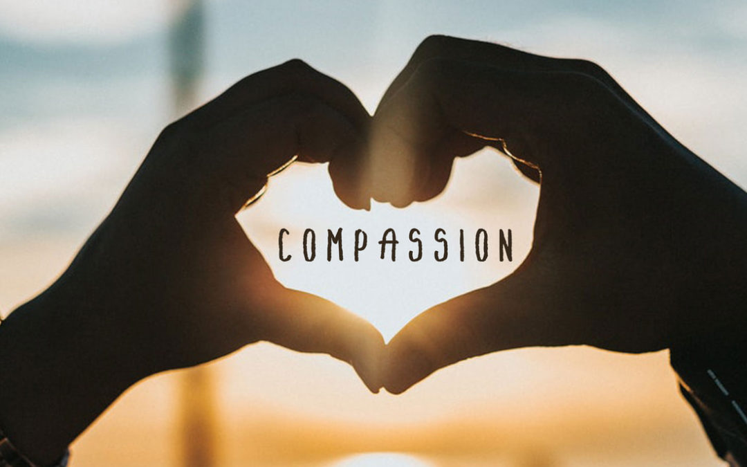 Compassionate Gift Guide